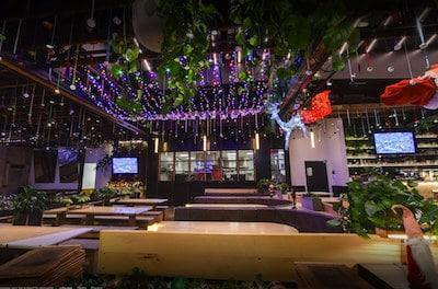 Professional Holiday Lighting Installation Commercial Spotlight