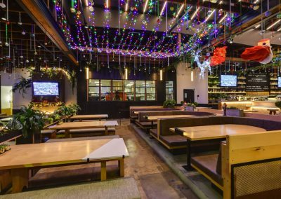 Professional Holiday Lighting Installation Commercial Spotlight
